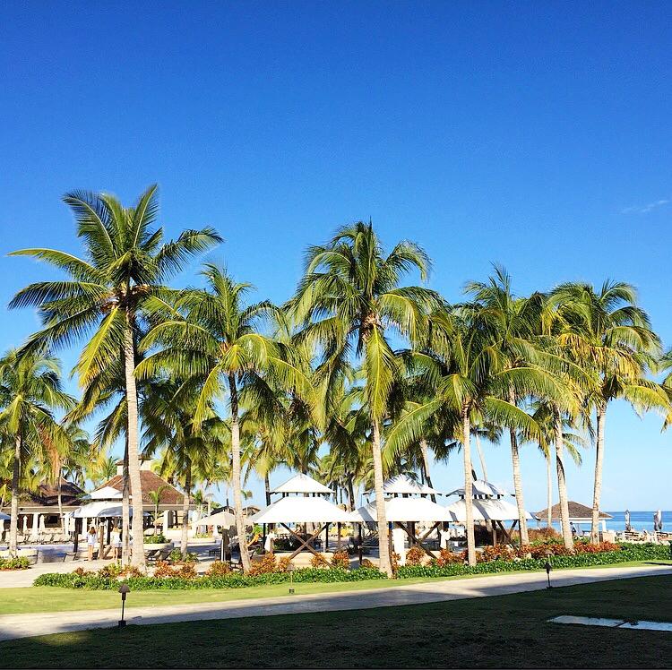 KARENMICHELLE ||  Palm Trees Jamaica
