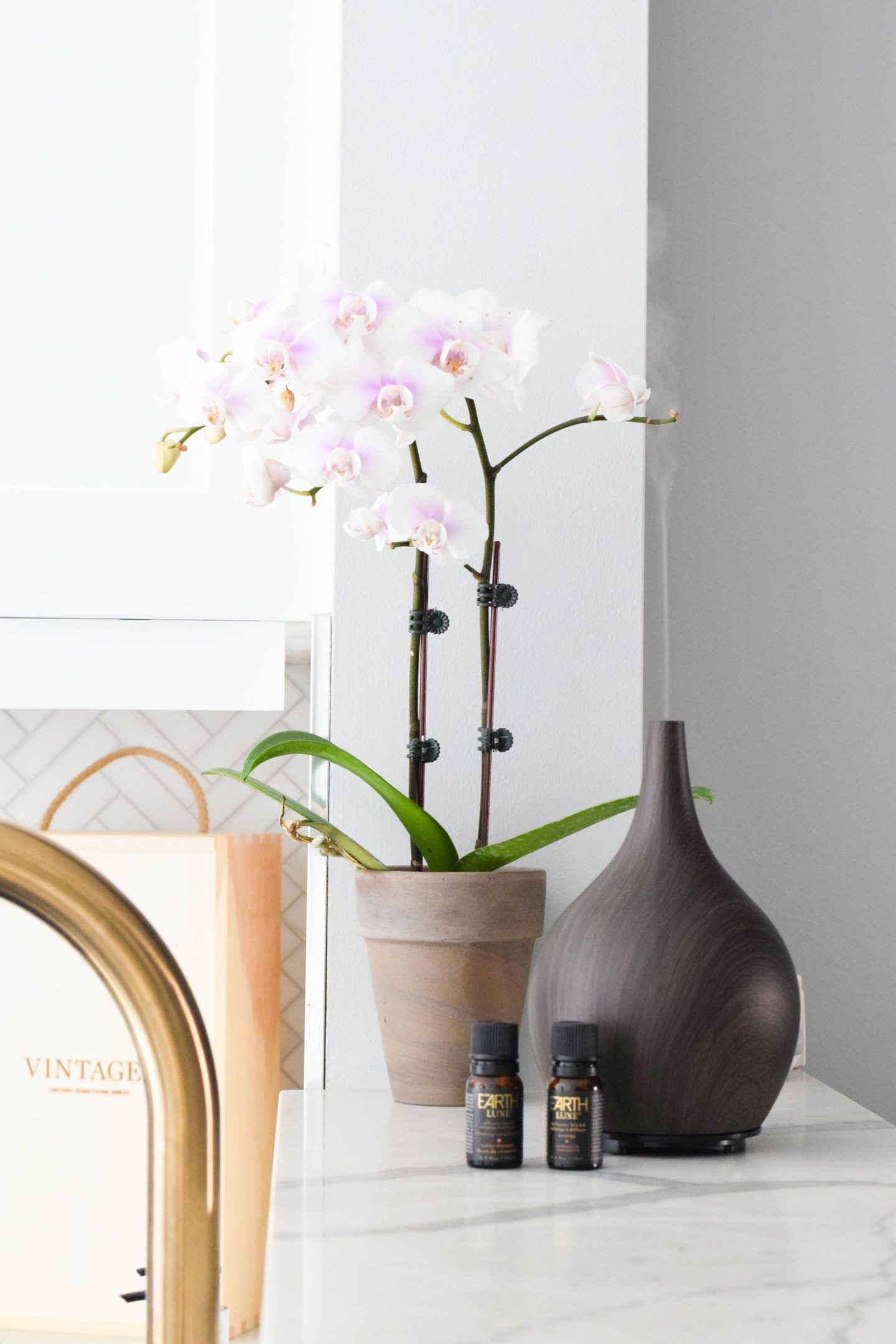 Wellness Wednesday: Why You Should Have a Diffuser At Home